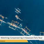 Oslob Whale Shark Watching-Canyoneering in Kawasan Falls Tour