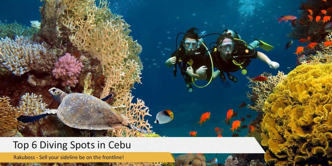 Top 6 Diving Spots in Cebu