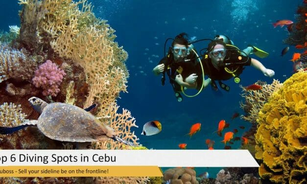 Top 6 Diving Spots in Cebu